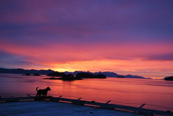 Vista vs. the Sunset