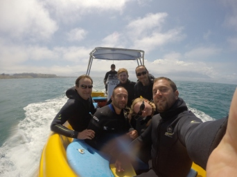 Our motley crew en route to swim with sea lions.
