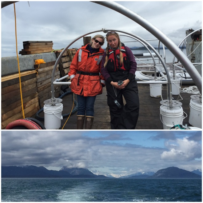 Deploying hydrophones is hard work. Photo Credit: Leanna Mattews (sadly not pictured... since she took all the pictures).