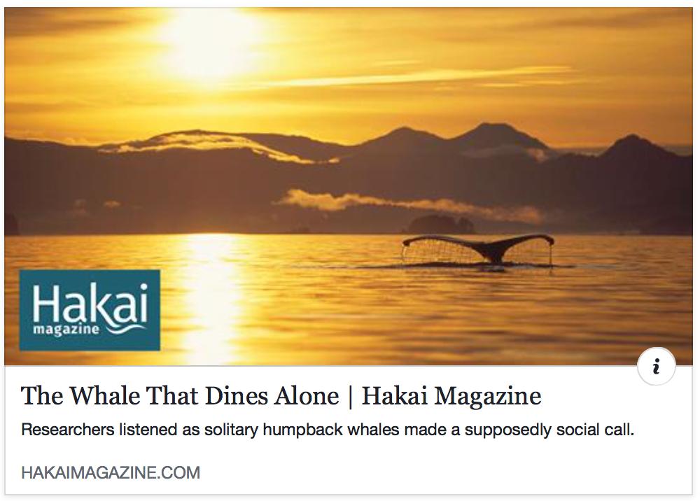 hakai-story-feedng